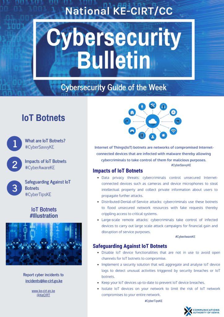 IoT Botnets
